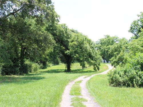 Beautiful Pecan Orchard Or Homesite : Fort Valley : Peach County : Georgia