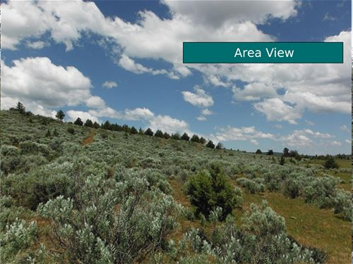 20 Acres Aspen Trail Road, Ca : Madeline : Lassen County : California