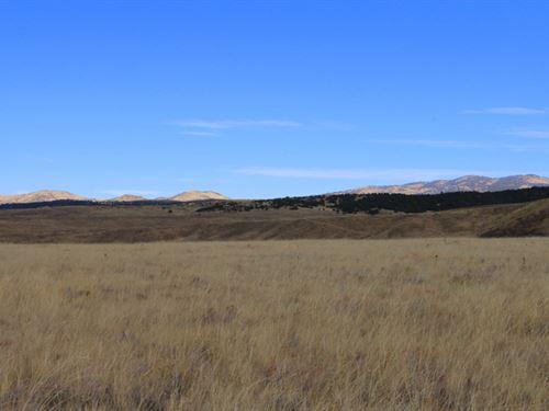 Sheep Creek Land : Westcliffe : Custer County : Colorado