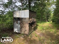 137 ac Hunting / Timber Tract Near : Stewart : Montgomery County : Mississippi