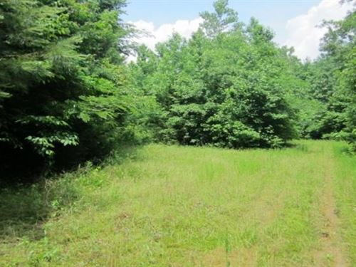 160.23 Acres In Union County : New Albany : Union County : Mississippi