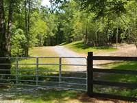 Granny Hughes Tract : Mineral Bluff : Fannin County : Georgia