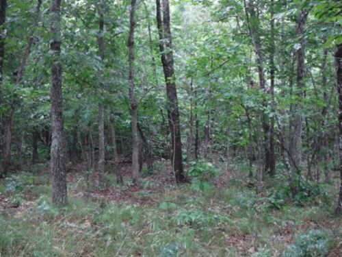 90 Ac Surrounded By State & County : Crossville : Cumberland County : Tennessee