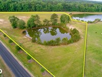 Poplar Grove Equestrian Estate : Ravenel : Dorchester County : South Carolina