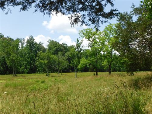 Tract 1 28.50Ac W/ Creek, Pasture : Hilham : Overton County : Tennessee