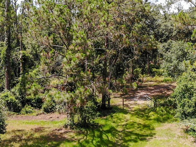 90 Acres Residential Development : Lakeland : Polk County : Florida