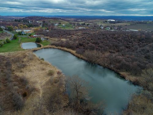 Beautiful Farm Land With Pond : Milton : Ulster County : New York