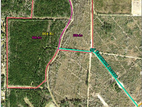 63 Acres Highway 12 : Mauriceville : Orange County : Texas