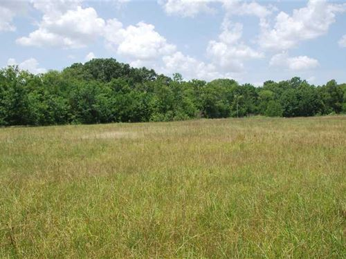 33 Acres Near Hope Hull : Burkville : Lowndes County : Alabama