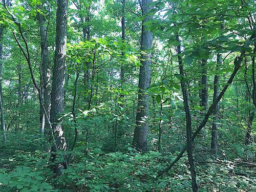 Richards Rd - 30 Acres : Cambridge : Guernsey County : Ohio