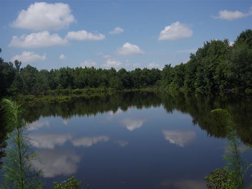 Ryan's Hobby Farm : Waynesboro : Burke County : Georgia