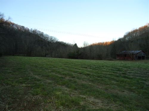 7.30Ac W/ Flowing Creek/Barn/Mostly : Celina : Clay County : Tennessee