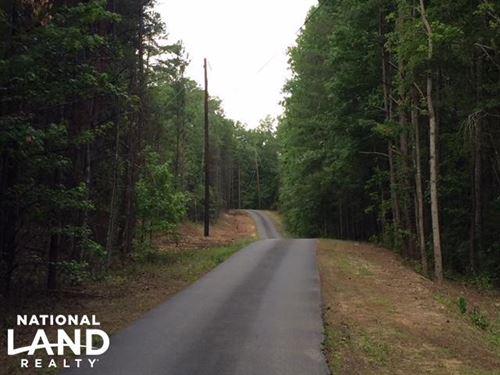 Bald Rock Mountain Timber & Hunting : Odenville : Saint Clair County : Alabama