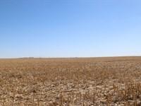 Yuma County Pivot Irrigated Land : Eckley : Yuma County : Colorado