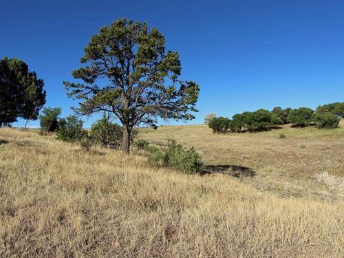 Development Land For Sale In Dolore : Dolores : Montezuma County : Colorado
