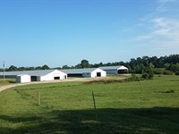Diamond S Farm Two House Breeder : Arley : Winston County : Alabama