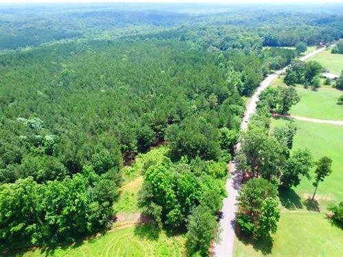 Tishomingo State Park Tract : Dennis : Tishomingo County : Mississippi