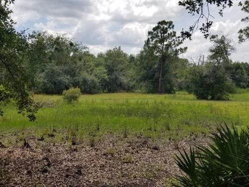 Magnolia Hidden Homesite Country Re : Arcadia : Desoto County : Florida