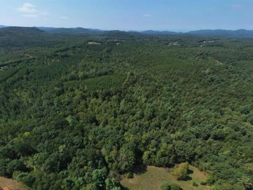 South Mountain Hunting And Timber : Connelly Springs : Burke County : North Carolina