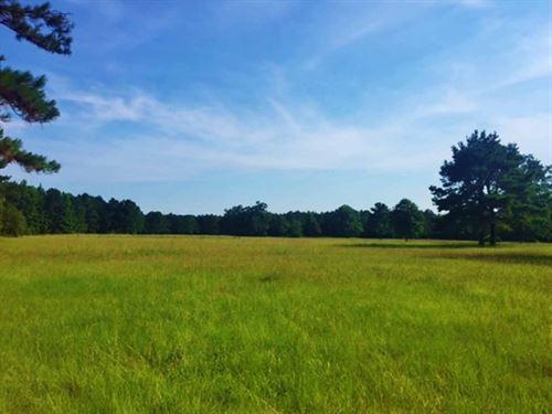 74 Acres Okatoma River Property For : Seminary : Covington County : Mississippi