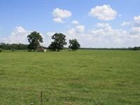 527 Acres Close To Jacksonville : Callahan : Nassau County : Florida