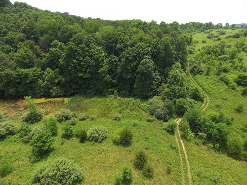 Luther Jones Rd, 54 Acres : Jackson : Ohio