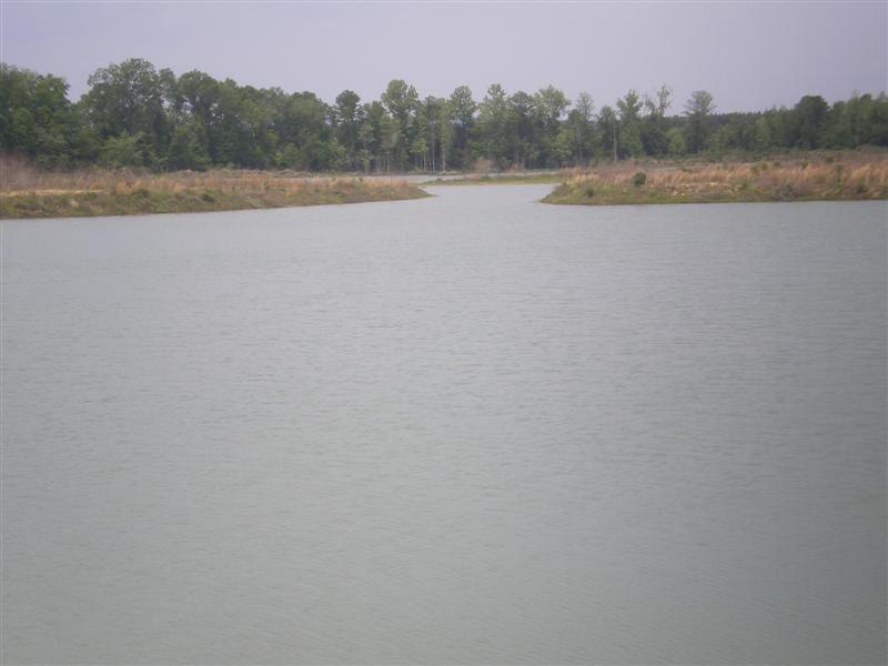 Macon Co 107.6 Acres : Shorter : Macon County : Alabama