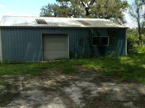 11.5 Wonderful Acres With Pond : Brooksville : Hernando County : Florida