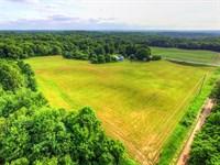 Farm And Home In Newaygo County : Sand Lake : Newaygo County : Michigan