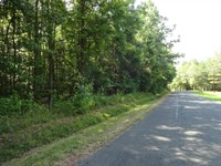 64.85 Acres - Wooded Acreage : Anderson : Anderson County : South Carolina