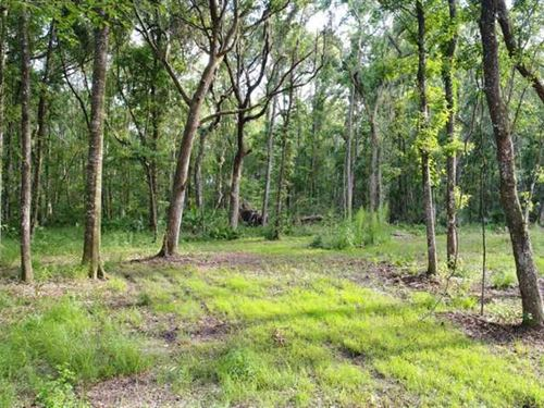 25 Acres Land For Sale in Camden : Kingsland : Camden County : Georgia