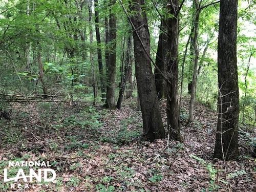 20 Acres Hunting & Timber Tract Nea : Grenada : Mississippi