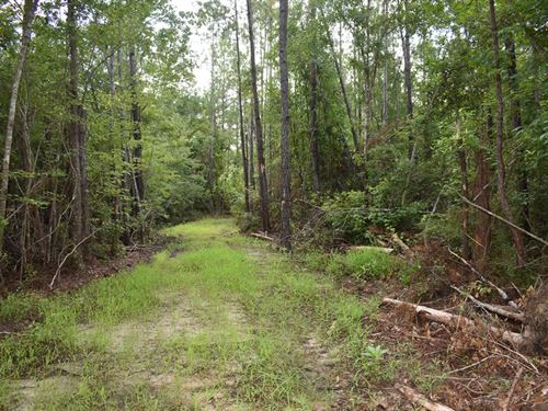 30-009 Flomaton-Welka Tract 3 : Flomaton : Escambia County : Alabama