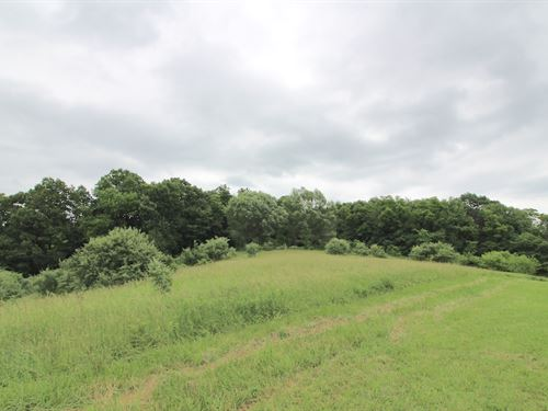 Hull Rd, 10 Acres : Salineville : Columbiana County : Ohio
