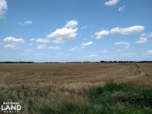 78 Acres Premium Dryland : Sedgwick : Harvey County : Kansas