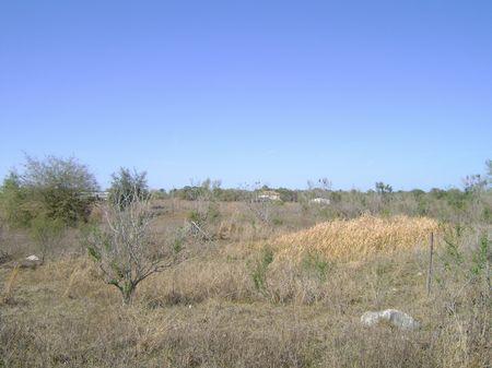 5 Hilltop Acres : Brooksville : Hernando County : Florida