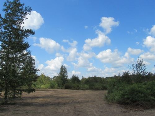 44.35 Acres Hunting Land With Creek : Prentiss : Jefferson Davis County : Mississippi