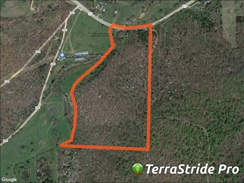 23 Acres in Alpena, AR : Alpena : Carroll County : Arkansas