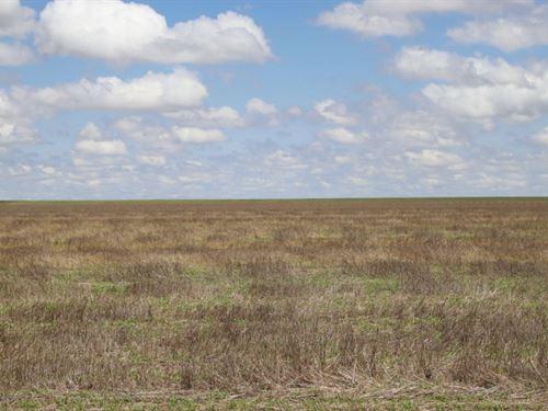 Cleo Fryrear Estate Dryland Auction : Haxtun : Phillips County : Colorado