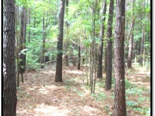 43.6 Acres In Simpson County : Mendenhall : Simpson County : Mississippi