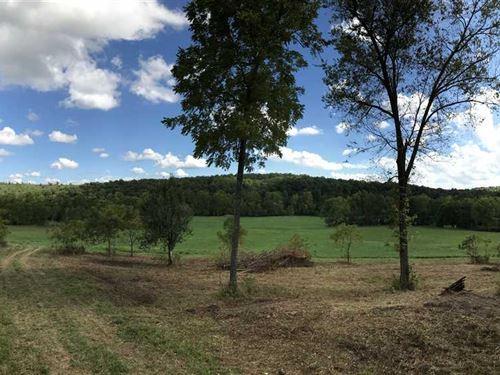 Reduced, 170 Acre Recreational Pro : Leadmine : Dallas County : Missouri