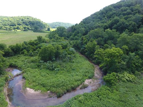 Driftless Area 54 Ac In Crow Hollow : Gays Mills : Crawford County : Wisconsin