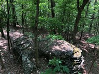 20 Acres Eureka Springs Cr-241 Tra : Eureka Springs : Carroll County : Arkansas
