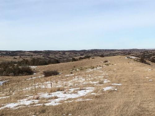 Callahan Road Pasture : Brady : Lincoln County : Nebraska