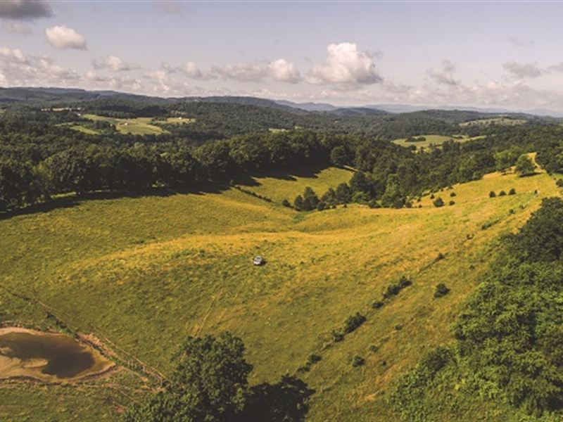 Virginia Land Auction In 3 Tracts : Draper : Wythe County : Virginia