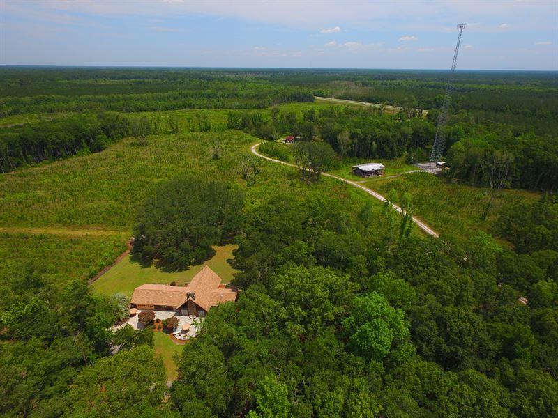90 Acres With Home, Income Potentia : Jesup : Wayne County : Georgia