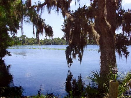 Unique Lakefront Property : Bunnell : Flagler County : Florida
