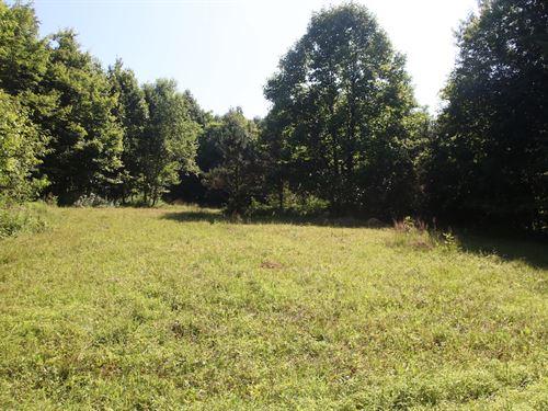 Tr 55, 80 Acres : Warsaw : Coshocton County : Ohio
