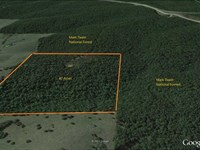 40 Acres For Sale in Carter County : Van Buren : Carter County : Missouri