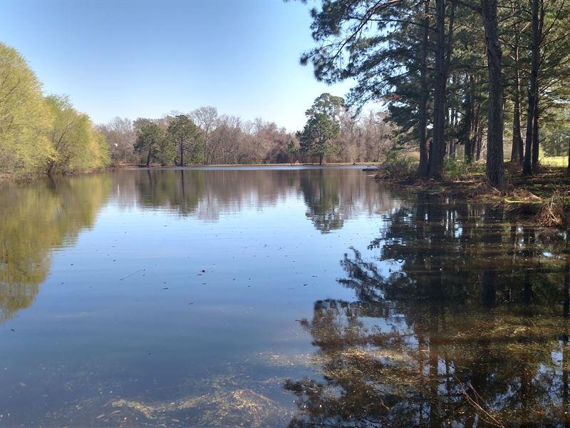 Nice Minifarm With Gorgeous Pond : Sycamore : Turner County : Georgia